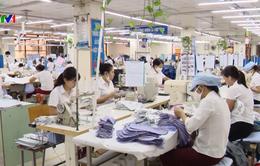 Doanh nghiệp tư nhân đóng góp tích cực vào tăng trưởng