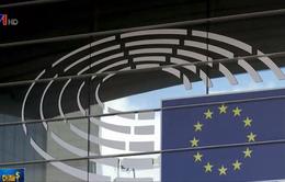 EU có thể dùng thuế carbon để đáp trả các mức thuế mới của Mỹ