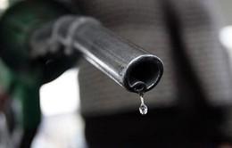Giá xăng tại Australia có thể tăng cao nhất 11 năm qua