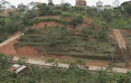 Đà Lạt chấn chỉnh tình trạng phân lô đất nông nghiệp bán nền