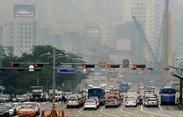 Hàn Quốc cấm lưu thông ô tô cũ chạy bằng dầu diesel