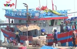 Người dân lo sợ nạn côn đồ ở Cảng Gianh