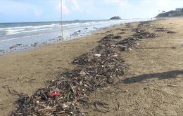 Rác thải ngập bãi sau TP Vũng Tàu