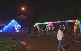 Lễ hội ánh sáng lần đầu xuất hiện tại Đà Lạt
