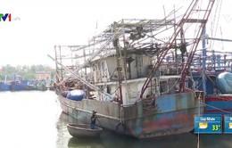Ngư dân bị kiện sau khi vay đóng tàu theo Nghị định 67