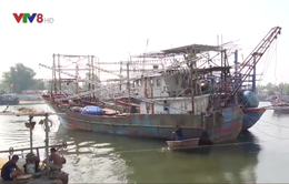Ngân hàng sẽ kiện ngư dân ra toà vì nợ vay tàu NĐ 67