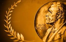 Sắp công bố giải Nobel Văn học 2019