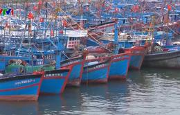 Đà Nẵng cấm biển, kêu gọi tàu thuyền vào bờ tránh bão số 6