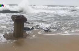 Quảng Nam khẩn trương phòng chống bão số 6