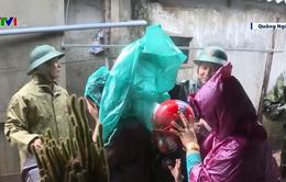 Quảng Ngãi: Di dời khẩn cấp hơn 10.000 hộ dân vùng triều cường