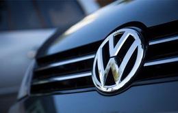 Volkswagen bắt đầu sản xuất ắc-quy ô tô mới