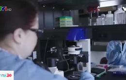 Phát minh mới về phương pháp điều trị HIV/AIDS