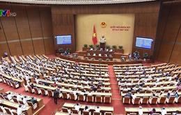 Đại biểu Quốc hội nhất trí với việc cấp thiết triển khai dự án sân bay Long Thành