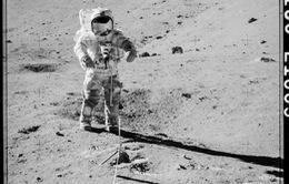 Lần đầu tiên mở hộp mẫu vật lấy từ Mặt Trăng