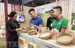 Hỗ trợ doanh nghiệp nữ làm chủ qua Food Expo 2019