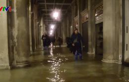Italy ban bố tình trạng khẩn cấp tại Venice do triều cường