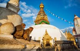 Đền khỉ - Nơi hòa hợp tôn giáo tại Nepal