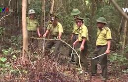 Hà Tĩnh khó kiểm soát tình trạng săn bắt động vật hoang dã