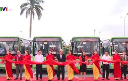 Mở thêm tuyến xe bus sử dụng nhiên liệu sạch