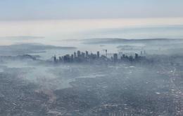 Thành phố Sydney tràn ngập trong biển khói do ảnh hưởng của cháy rừng