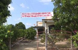 Dân bức xúc vì dự án lưới điện 110KV không đền bù thỏa đáng