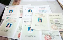 Nhiều trường hợp sử dụng bằng giả xin vào làm việc trong các cơ quan Nhà nước