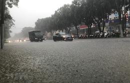 Cảnh báo mưa lớn ở Trung Bộ từ đêm nay