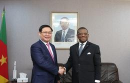 Tăng cường hợp tác Việt Nam - Cameroon