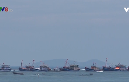 Đưa tàu cá ra nước ngoài đánh bắt hợp pháp