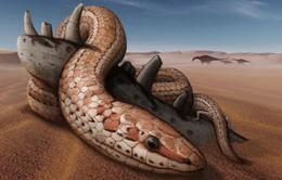 Phát hiện lý thú: 70 triệu năm trước, rắn đã từng có chân