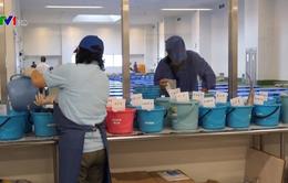 Nhật Bản lựa chọn thực phẩm từ Fukushima phục vụ cho Olympics 2020