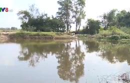 Phạt 500 triệu & đình chỉ hoạt động nhà máy tinh bột sắn Thừa Thiên - Huế
