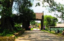 Xây dựng làng cổ Đường Lâm thành điểm du lịch