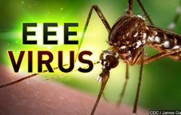 Virus viêm não do muỗi lây lan rộng ở Michigan, Mỹ