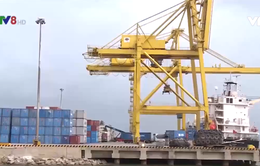 Đà Nẵng: Diễn đàn Logistics nâng cao giá trị nông sản