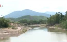 Khánh Hòa: Cần có biện pháp bảo vệ nguồn nước đầu nguồn