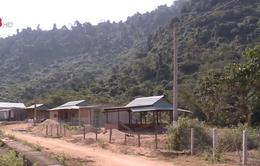 Quảng Nam nâng cao chất lượng đạt chuẩn nông thôn mới