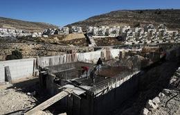 Liên đoàn Arab bác bỏ lập trường của Mỹ về khu định cư ở Bờ Tây