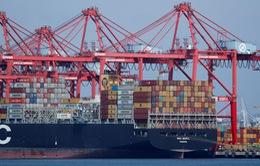 Các nhà đàm phán thương mại Mỹ - Trung Quốc điện đàm