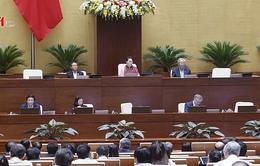 Quốc hội thảo luận Luật Hòa giải, đối thoại tại Tòa án