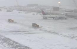Mỹ: Hàng trăm chuyến bay bị hủy do bão tuyết