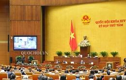 Quốc hội thông qua 11 luật, bộ luật; 17 Nghị quyết, cho ý kiến về 10 dự án Luật