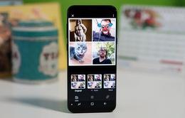 Google Photos thêm tính năng chỉnh sửa mới trên Android