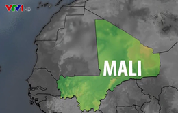 Rơi máy bay tại Mali, 13 binh sĩ Pháp thiệt mạng