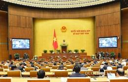 Quốc hội thảo luận về dự án Luật Xây dựng (sửa đổi)