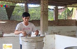 Bắc Giang chưa chi trả hỗ trợ tiêu hủy lợn