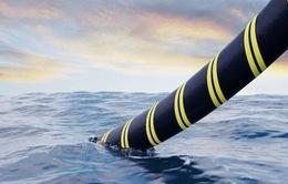 Cáp quang biển AAG lại gặp sự cố, Internet đi quốc tế ảnh hưởng