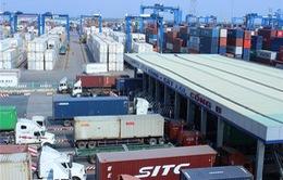 Hơn 2.900 container vô chủ tồn đọng tại cảng biển TP.HCM