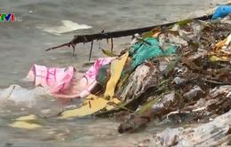 Ô nhiễm rác thải nhựa trên biển Việt Nam - Thực trạng và giải pháp