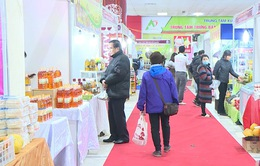 Hơn 250 gian hàng tham gia Hội chợ nông sản thực phẩm Tết Canh Tý 2020